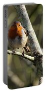 Robin On Branch Donegal Portable Battery Charger