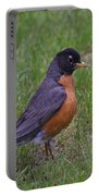 Robin On The Lawn Portable Battery Charger