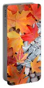 Rock Garden Autumn Leaves Portable Battery Charger