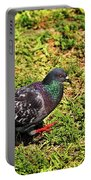 Rock Pigeon Portable Battery Charger