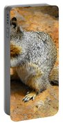 Rock Squirrel Portable Battery Charger