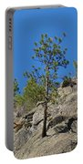 Rockin' Tree Portable Battery Charger
