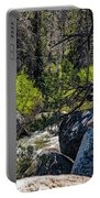 Rocks Water And Knarly Branches Portable Battery Charger