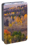 Rocky Mountain Autumn View Portable Battery Charger