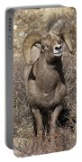 Rocky Mountain Big Horn Sheep Portable Battery Charger