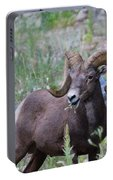 Rocky Mountain Bighorn Sheep Portable Battery Charger