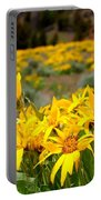 Rocky Mountain Helianthella Portable Battery Charger