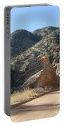 Rocky Mountain Mascot Portable Battery Charger