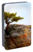 Rocky Mountain Tree Portable Battery Charger