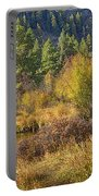 Rocky Mountains Autumn Portable Battery Charger