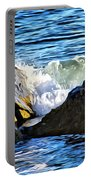 Rocky Shore 1 Portable Battery Charger