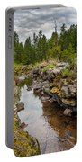 Rogue River Near Union Creek Portable Battery Charger