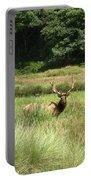 Roosevelt Elk 2 Portable Battery Charger