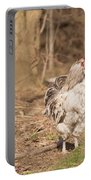 Rooster In The Woods. Portable Battery Charger
