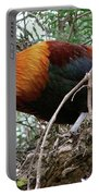 Roosting In San Juan Portable Battery Charger