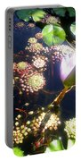 Root Of Beauty Portable Battery Charger
