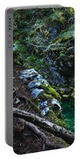 Rooted In Emerald  Portable Battery Charger
