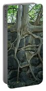 Roots And Rocks Portable Battery Charger