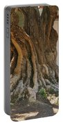 Roots Portable Battery Charger