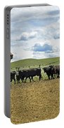 Roping In The Branding Pen Portable Battery Charger
