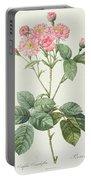 Rosa Centifolia Caryophyllea Portable Battery Charger