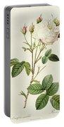 Rosa Centifolia Mutabilis Portable Battery Charger