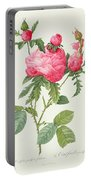 Rosa Centifolia Prolifera Foliacea Portable Battery Charger