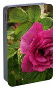 Rosa Rugosa Art Photo Portable Battery Charger