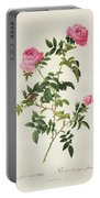 Rosa Sepium Flore Submultiplici Portable Battery Charger by Pierre Joseph Redoute