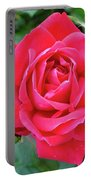 Rose And Buds - Double Knock Out Rose Portable Battery Charger