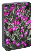 Rose Campion Portable Battery Charger