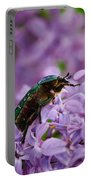 Rose Chafer On Lilac Portable Battery Charger