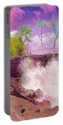 Rose Colored Splash At Mackenzie Portable Battery Charger