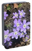 Rose Lake Beauties Portable Battery Charger