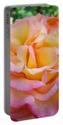Rose Pink Yellow Rose Flower 2 Rose Garden Giclee Prints Baslee Troutman Portable Battery Charger
