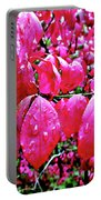 Rose Red 2 Portable Battery Charger