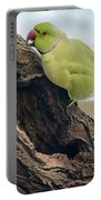 Rose-ringed Parakeet 03 Portable Battery Charger