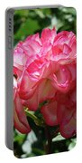 Roses Bouquet Pink White Rose Flowers 2 Rose Garden Baslee Troutman Portable Battery Charger