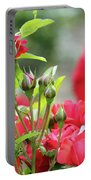 Roses Nature Spring Scene Portable Battery Charger