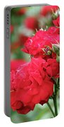 Roses Spring Scene Portable Battery Charger