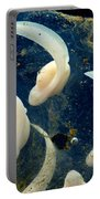 Rosy Ground Frog Eggs Portable Battery Charger