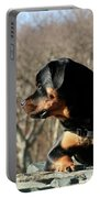 Rottie Profile Portable Battery Charger