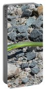 Rough Green Snake Portable Battery Charger