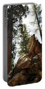 Round Meadow Giant Sequoia Portable Battery Charger