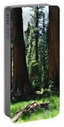 Round Meadow Sequoia Family Portrait Portable Battery Charger
