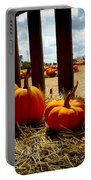 Row Of Pumpkins Sitting Portable Battery Charger