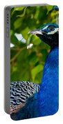 Royal Bird Portable Battery Charger