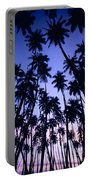 Royal Palm Grove Portable Battery Charger