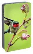 Ruby Garden Hummingbird Portable Battery Charger