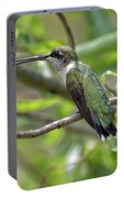 Ruby-throated Hummingbird - Female Portable Battery Charger